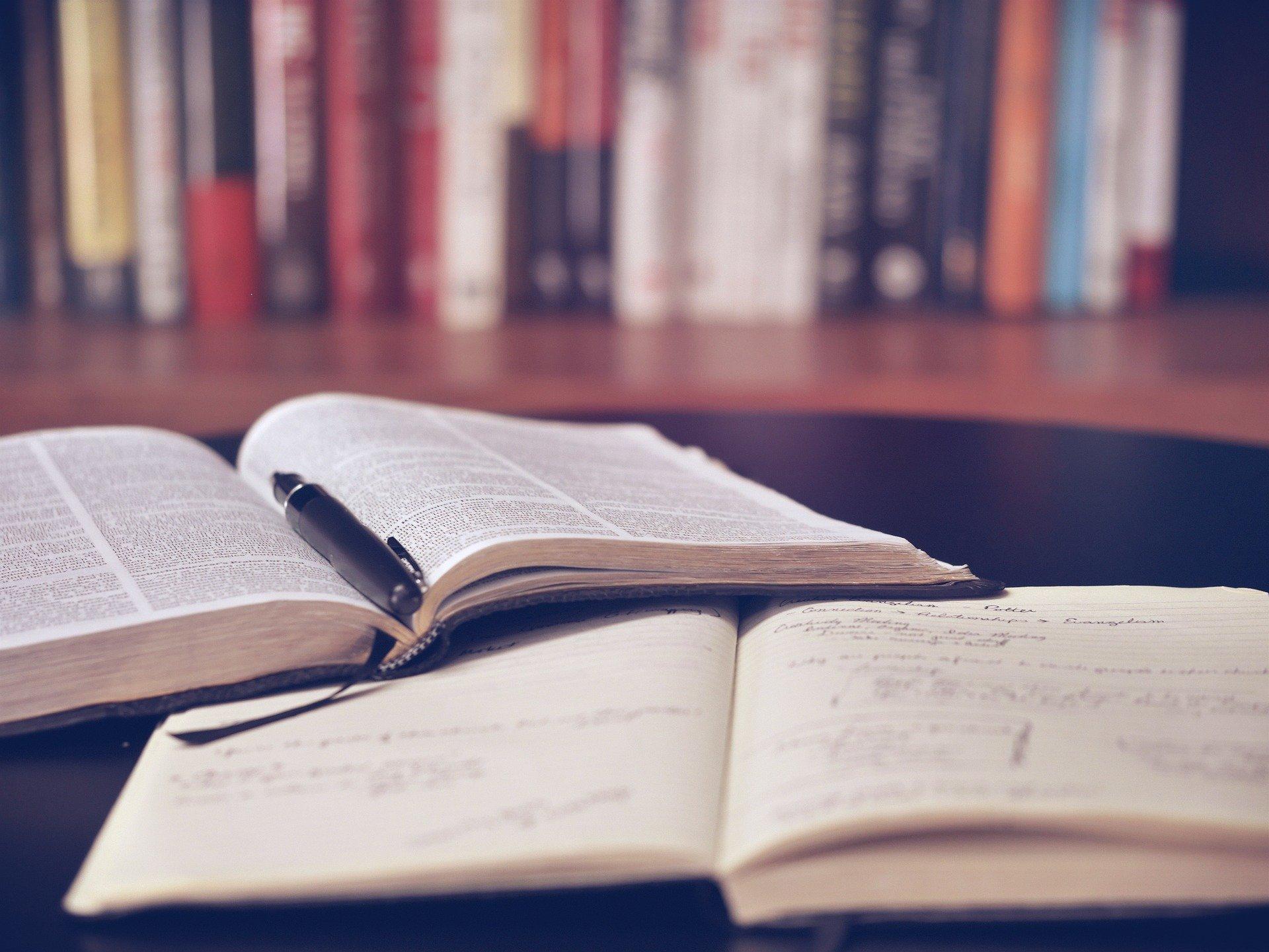 Jak zostać dziennikarzem growym – czytaj, czytaj, ijeszcze raz czytaj